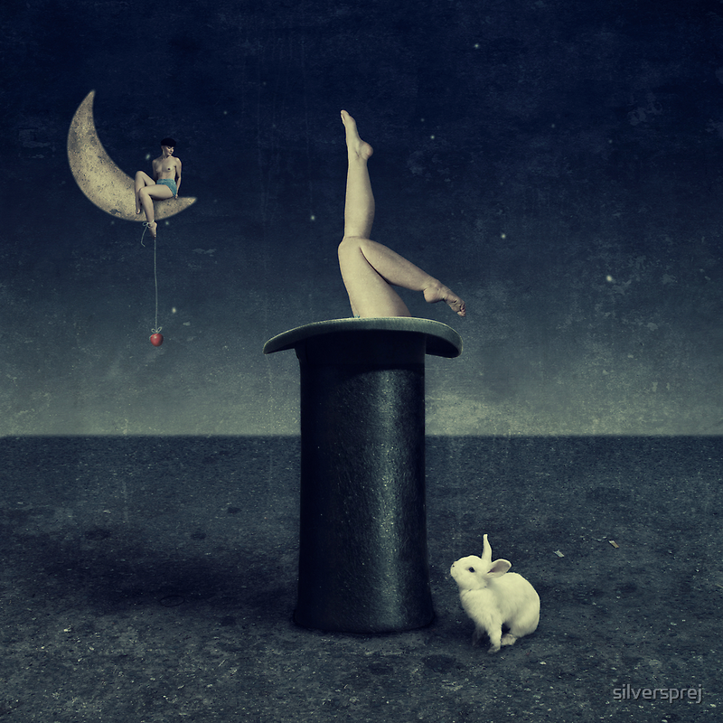 the rabbithole by silversprej