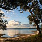 Wallis Lake paradise by Alex Howen