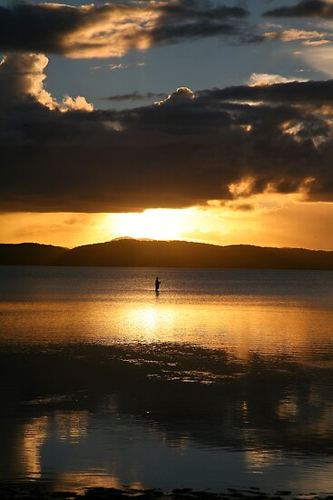 Lone fisherman at Wallis Lake by Alex Howen