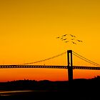 Birds in sunset by Vegard Giskehaug