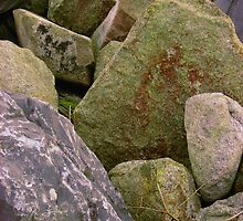 Rocky Composition by Orla Cahill