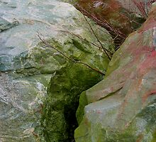 Rocky Abstract by Orla Cahill
