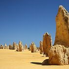 Pinnacles by DianaC