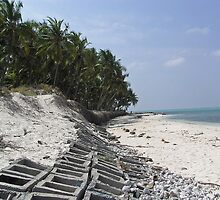 Coastline of Kadamat Island in the Lakshadweep Islands by ashishagarwal74