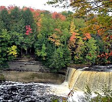 Upper Tahquamenon Falls by Erika Rathka