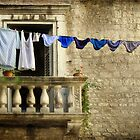 Knickers on a line by SarahSchloo