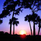 Sunset Vivid by sunsetrainbow