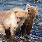 Little Bears by Gina Ruttle  (Whalegeek)