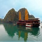 """""""Halong Ginger"""" sails in the Gulf of Tonkin, North Vietnam by Bev Pascoe"""
