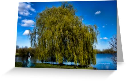 weepy willow daydreamer~ by WJPhotography