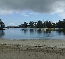 Just another day in Hilo by Hannah Fenton-Williams