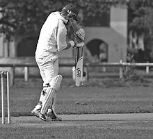 Cricket by Robert Shaw