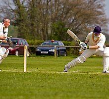 Cricket by Robert Shaw