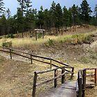 Godey Creek Trail by bonniebrae