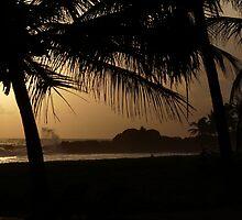 Sunset at Heritance hotel, Sri Lanka by neil mcwhinnie