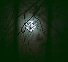 Moonlit Mystery by Sheila Simpson
