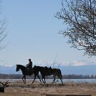 View of horseback riding at Barr Lake State Park, close to my house by janetmarston