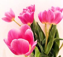 My Easter Tulips by ©Maria Medeiros