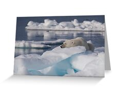 An Ice Rest Greeting Card