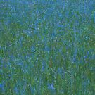 Blue Meadow I by Stephen Mitchell