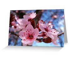 Blossum Song Greeting Card