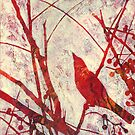 &quot;Song Bird #1&quot; by Karyn Fendley