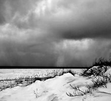 Approaching Storm by Vicki Oseland