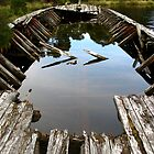 Ruins of a Huon Pine Barge by Marilyn Harris