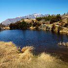 Hilltop Lake by Robert Scammell