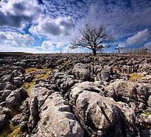 Limestone Country by Andrew Leighton