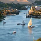 Cataracts of the Nile Egypt by Sheila Laurens