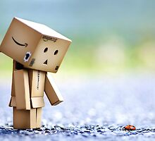 A day in a life of Danbo by Natalia Campbell
