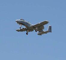 A-10 Thunderbolt by maccole25