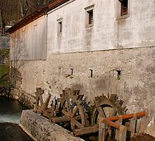 Slovenian Mill by jojobob