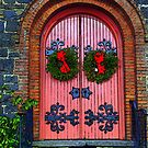 colorful door by deegarra