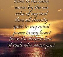 echo of my soul... by aspectsoftmk