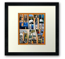 EARTH DAY 2009 FROM DAVID M BOOTH, CABIN FEVER ARTWORKS Framed Print