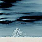 White LandScape by terrebo