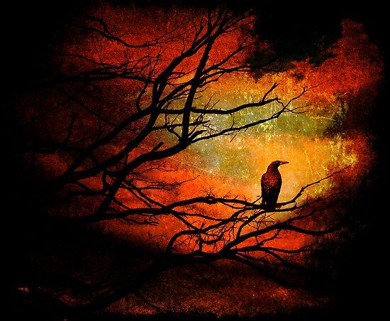 Basho's Crow by Ron C. Moss