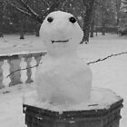 Mini Snowman by eyetoeye