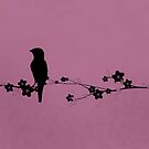 Grosbeak Silhouette by Kimberly Palmer
