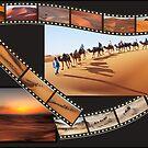 Sahara by Peter Hammer