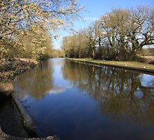 kennet and avon canal by terrylee