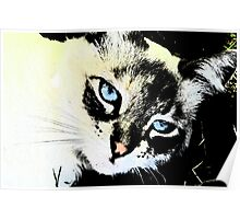 Ink Cat Poster