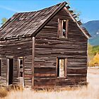 Montana Homestead by Patricia Montgomery