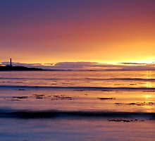 Firth Light by Jim Robertson