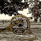 Gettysburg by Dyle Warren