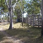 Outback Stockyards by faulsey