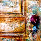 Door#7..The Red Door Knob by  Janis Zroback