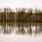 reflecting on spring by Ottawa Valley Photographer